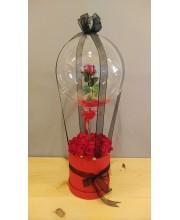 Aşkın Hasreti Balonlu Kutu Gül
